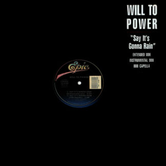 Will To Power - Say It's Gonna Rain (12