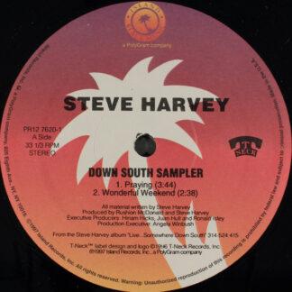 Steve Harvey (4) - Down South Sampler (12