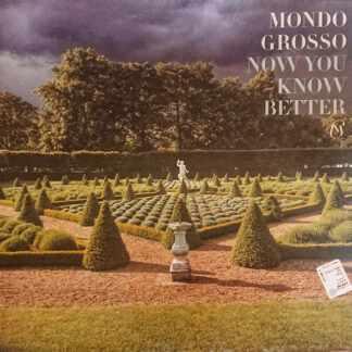 Mondo Grosso - Now You Know Better (12