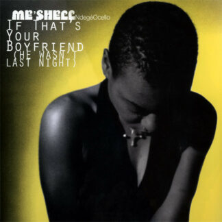 Me'Shell NdegéOcello - If That's Your Boyfriend (He Wasn't Last Night) (12