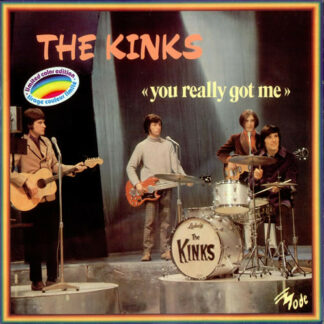 The Kinks - You Really Got Me (LP, Comp)