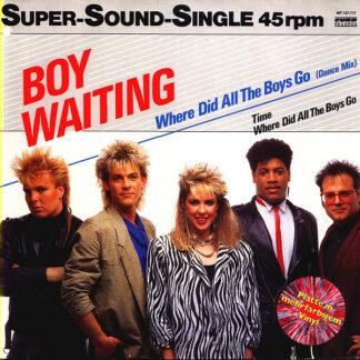 Boy Waiting - Where Did All The Boys Go (12