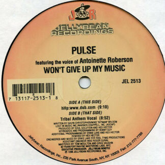 Pulse (3) - Won't Give Up My Music (12