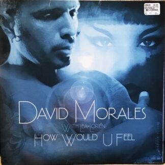 David Morales With Lea-Lorién - How Would U Feel (12