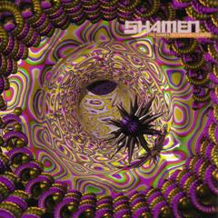 The Shamen - Destination Eschaton (12