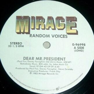 Random Voices - Dear Mr. President (12