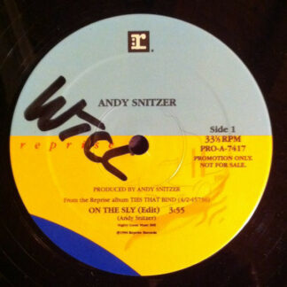 Andy Snitzer - On The Sly (12