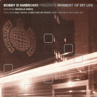 Bobby D'Ambrosio Featuring Michelle Weeks - Moment Of My Life (12