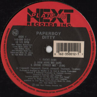 Paperboy - Ditty (12