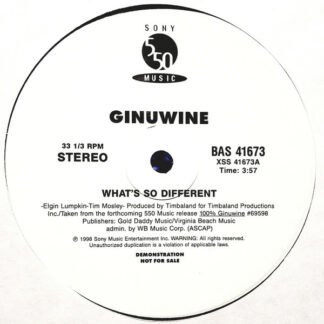 Ginuwine - What's So Different (12