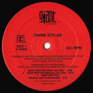 Divine Styler - Grey Matter (12