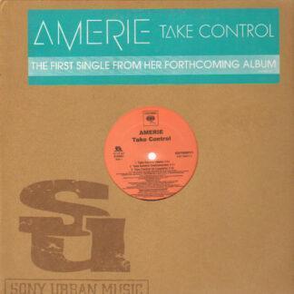 Amerie - Take Control / That's What U R (12